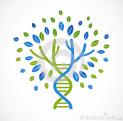 DNA, genetic icon - tree with green leaves Vector Illustration