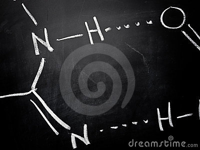 DNA molecular bond