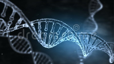 DNA Strand slow motion. Seamless looping animation of rotating DNA strands