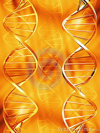 Free DNA Strands Royalty Free Stock Photography - 1037697