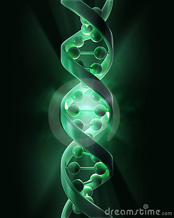 Free DNA Strands Stock Images - 23257194