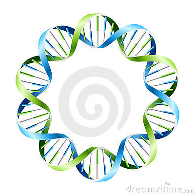 DNA Strands on circle
