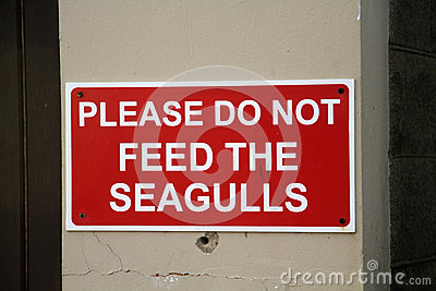 Do not feed the gulls sign.