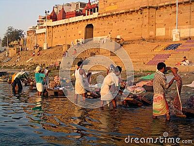 Dobhi in the Ganges