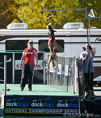 Dock Dog National Championship Big Air Event Editorial Photo
