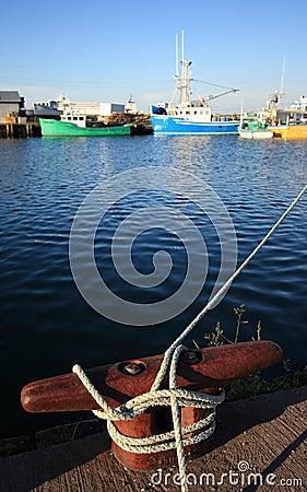 Dock Mooring Cleat in Harbour