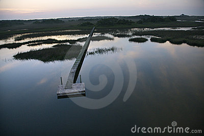 Dock over wetland.