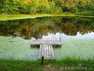 Dock on a Tranquil Pond