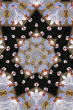 Doctor kaleidoscope