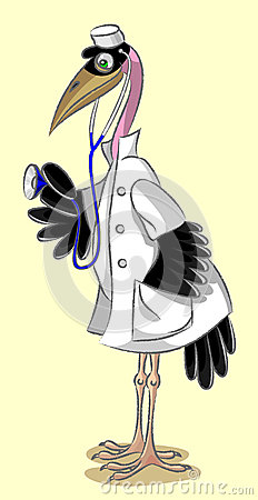 Doctor -  marabou