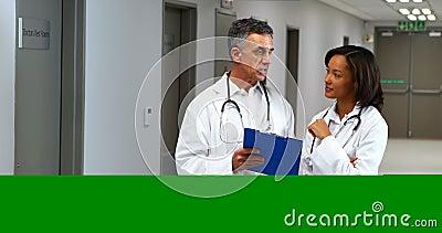 Doctores que tienen discusión sobre el tablero en pasillo almacen de metraje de vídeo
