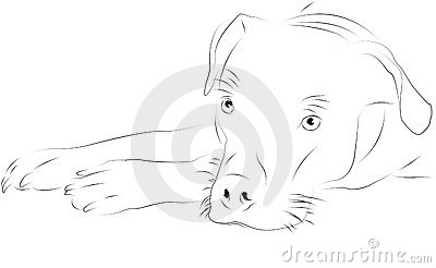 Stock photo dog as line drawing