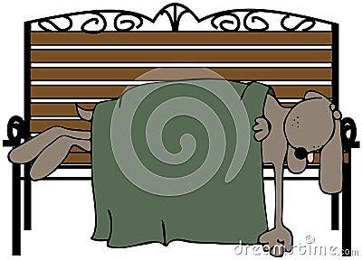 Dog Asleep On A Bench