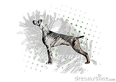 Dog background 2