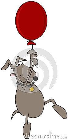 Dog On A Balloon