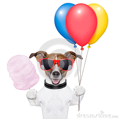 Dog balloons and cotton candy
