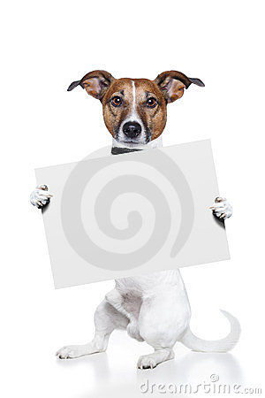 Free Dog Banner Stock Images - 23515884