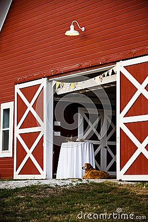 Dog and barn