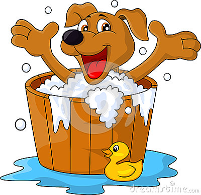 Free Dog Bathing Time Royalty Free Stock Photography - 28724597