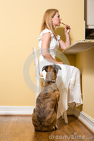Free Dog Begging For Bacon Royalty Free Stock Images - 78269669