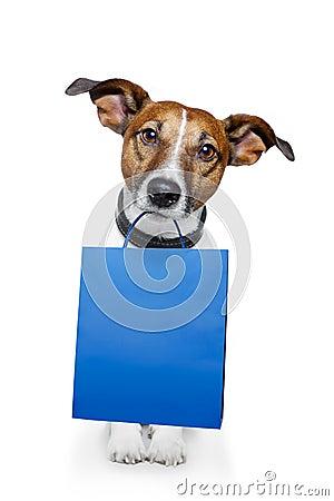 Free Dog Blue Bag Stock Photos - 23515923