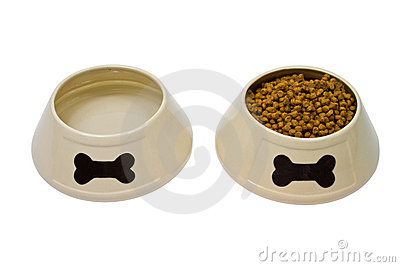 Dog bowls with food and water