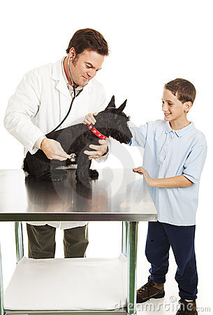 Dog and Boy at Vet