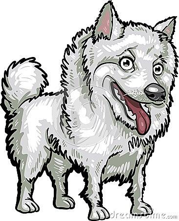 Dog Breeds: American Eskimo