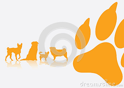 Dog breeds background