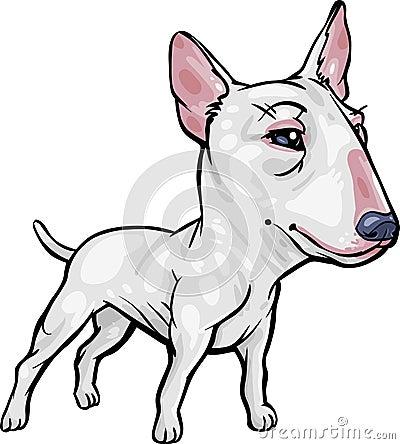 Dog Breeds: Bull Terrier