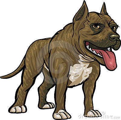 Dog Breeds: Pitbull