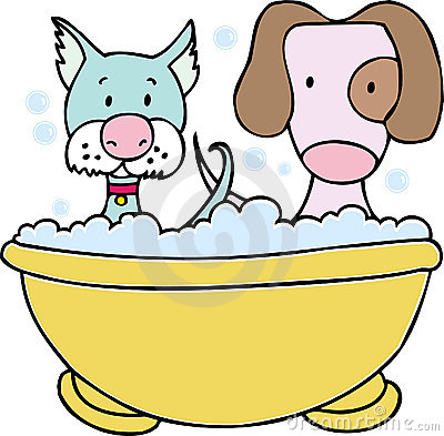 Dog and Cat Bath