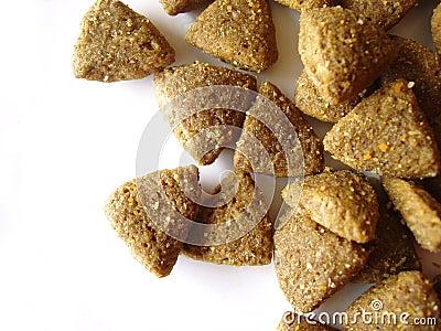 Dog or cat food