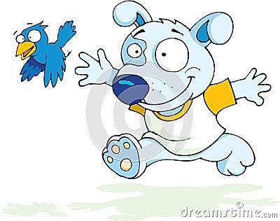 Dog chase bird