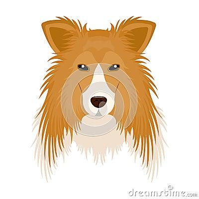 Free Dog, Collie Breed, Scottish Shepherd. Muzzle Collie Single Icon In Cartoon Style Vector Symbol Stock Illustration Web. Stock Images - 100685814