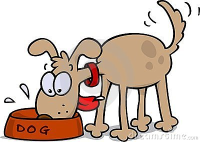 dog eating stock photo image 7946300 Pet Bowl Clip Art Pet Bowl Clip Art