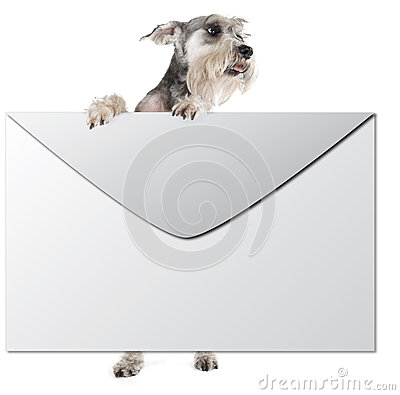 Dog with an envelope