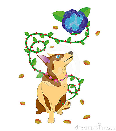 Dog and a flower with thorns.