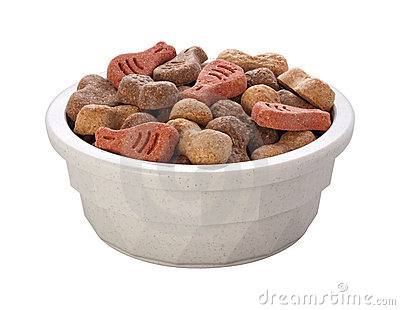Dog Food Bowl (with clipping path)