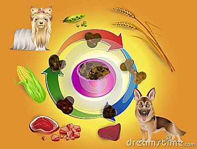 Dog food in bowls and pet feed ingredi