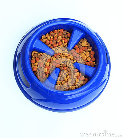 Free Dog Food In Bowl Stock Photography - 25993582