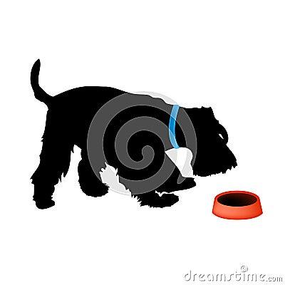 Dog fox terrier eating food