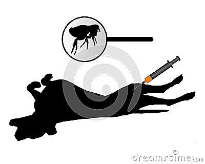 Dog gets an inoculation against fleas