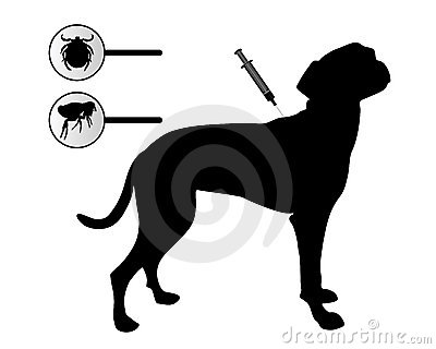 Dog gets an inoculation against fleas and ticks