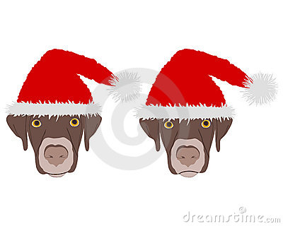 Dog heads with red santa claus caps