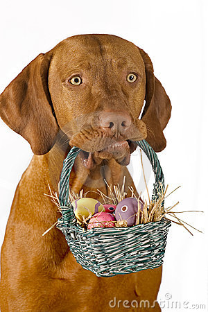 Easter Bunny With Eggs Clipart Dog Holding Easter Bas...