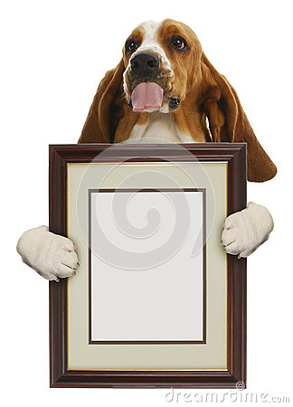 Free Dog Holding Picture Frame Royalty Free Stock Photography - 27392287