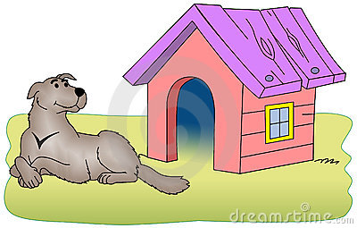 Dog beside the kennel