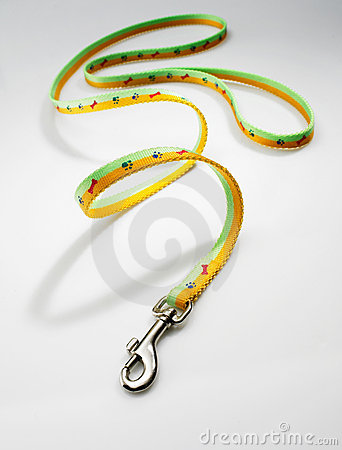 Free Dog Leash Royalty Free Stock Photography - 3518527