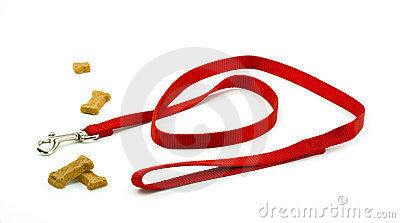Dog Leash and Biscuits